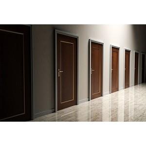 Як вибрати міжкімнатні двері